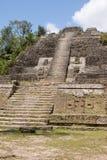Mayan tempel Arkivfoton
