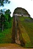 Mayan tempel Royaltyfria Foton