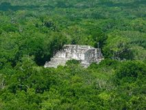 Mayan tempel in Calakmul stock foto