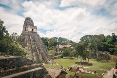Mayan Tempel I bij het Nationale Park van Tikal - Guatemala stock foto's