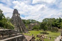 Mayan tempel I Gran Jaguar på den Tikal nationalparken - Guatemala Fotografering för Bildbyråer