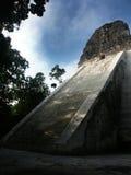 Mayan tempel i Tikal Arkivbild