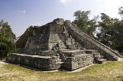 Mayan Tempel van Chacchoben dichtbij Costa Maya Mexico stock fotografie