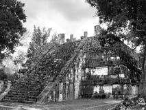 Mayan Tempel van Chichenitza Stock Afbeelding