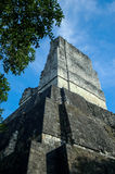 Mayan Temple in Guatemala Stock Photo