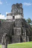 Mayan Temple in Guatemala. Ruins of a massive Mayan urban center lie in the rainforest of Guatemala. This area is known as the Tikal National Park and is the Stock Photo