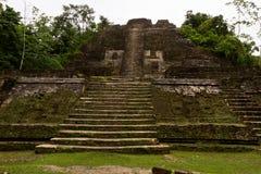 Mayan Temple, Lamanai  Belize Stock Images