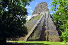 Mayan temple Nr five in Tikal, Guatemala Stock Image