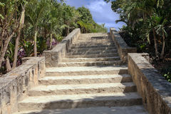 Mayan temple stairs up observation Stock Images