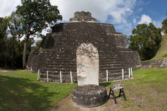Mayan Temple Tikal National Park Royalty Free Stock Images