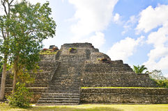 Mayan Temple, Yucatan Mexico Royalty Free Stock Photos