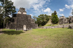 Mayan Temples Surrounded Jungle. Ruins of a massive Mayan urban center lie in the rainforest of Guatemala. This area is within Tikal National Park and is the Stock Photography