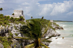 Mayan Temples at Tulum, Mexico Stock Image