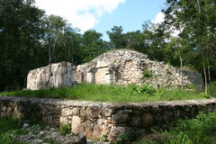 Mayan tomb in jungle Royalty Free Stock Images