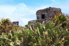 Mayan Tulum fördärvar på den yucatan halvön Royaltyfri Foto