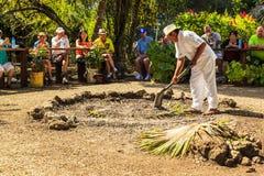 Mayans приветствующее Стоковое Изображение
