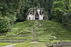 mayapalenquetempel arkivbild