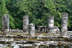 Mayaruine in Cozumel, Mexiko lizenzfreies stockbild