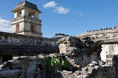 Mayaruinen in Palenque Stockbilder