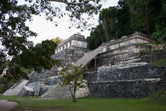 Mayaruinen in Palenque Stockfoto