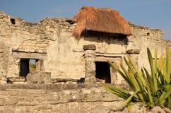 Mayaruinen in Tulum, Mexiko lizenzfreies stockbild