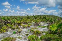 Mayaruinen von Tulum Alte Stadt Archäologische Fundstätte Tulum Riviera-Maya mexiko Lizenzfreie Stockbilder