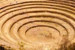mayas Fotografía de archivo