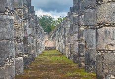 Mayaspalten lizenzfreies stockbild