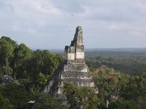 Mayatempel bei Tikal lizenzfreies stockbild