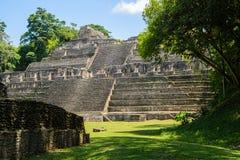 Mayatempel ruiniert Belize Stockfoto