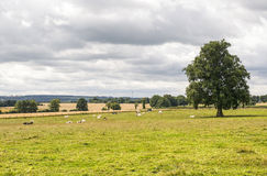 Mayenne - Landscape Royalty Free Stock Photography