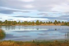 Mayfield池塘 库存图片