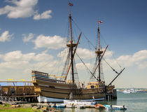 mayflower images stock