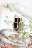 Mayflower fragrance Stock Photography