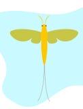 Mayfly insekta Clipart wektor zdjęcia stock