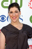 Mayim Bialik Royalty Free Stock Images