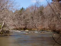 Mayo River em Mayo River State Park fotos de stock royalty free
