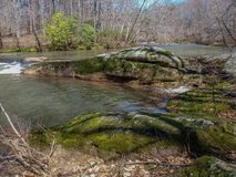 Mayo River em Mayo River State Park imagem de stock royalty free