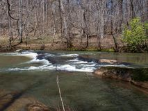 Mayo River em Mayo River State Park fotografia de stock royalty free