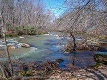 Mayo River p? Mayo River State Park arkivbild
