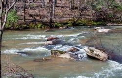 Mayo River p? Mayo River State Park royaltyfri fotografi