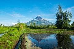 Mayon Vocalno Legazpi, Φιλιππίνες Στοκ εικόνες με δικαίωμα ελεύθερης χρήσης