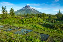 Mayon Vocalno in Legazpi, Philippines. Mayon Volcano or Mount Mayon, is an active stratovolcano in the province of Albay in Bicol Region, on the large island of Stock Image