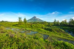 Mayon Vocalno in Legazpi, Philippines. Mayon Volcano or Mount Mayon, is an active stratovolcano in the province of Albay in Bicol Region, on the large island of Stock Photography