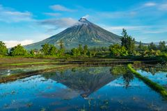 Mayon Vocalno w Legazpi, Filipiny Fotografia Stock