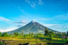 Mayon Vocalno w Legazpi, Filipiny Obrazy Royalty Free
