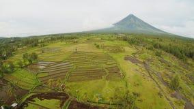 Mayon vulkan nära den Legazpi staden i Filippinerna Flyg- sikt över risfält Den Mayon vulkan är en aktiv vulkan och lager videofilmer