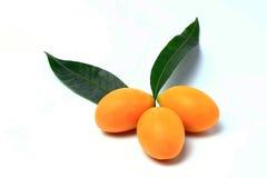 Mayongchid, Mayongchit marian śliwka, gandaria, śliwkowy mango, biały tło Obrazy Stock