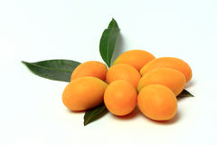 Mayongchid, Mayongchit marian śliwka, gandaria, śliwkowy mango, biały tło Fotografia Royalty Free