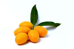 Mayongchid , Mayongchit marian plum, gandaria, plum mango,white background Royalty Free Stock Image